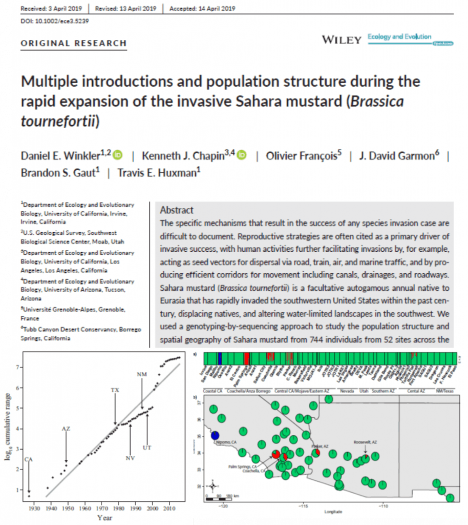Population genetics and invasion history of Sahara mustard