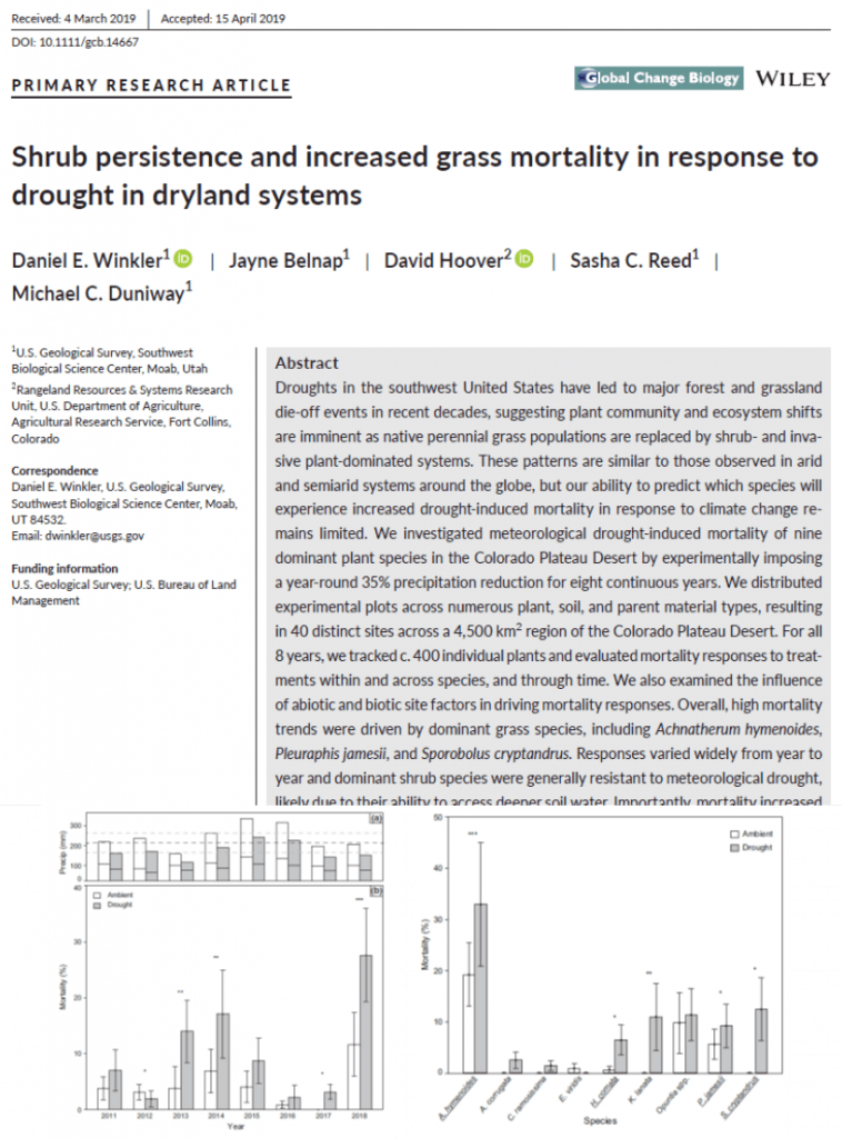 Drought impacts on desert shrubs and grasses published in Global Change Biology